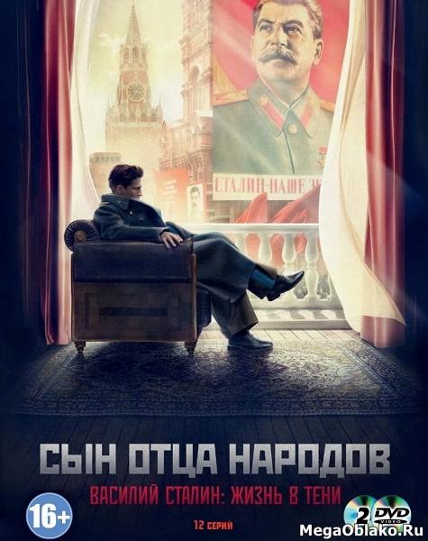 Сын отца народов (1-12 серии из 12) / 2013 / РУ / DVDRip + WEB-DL (1080p)