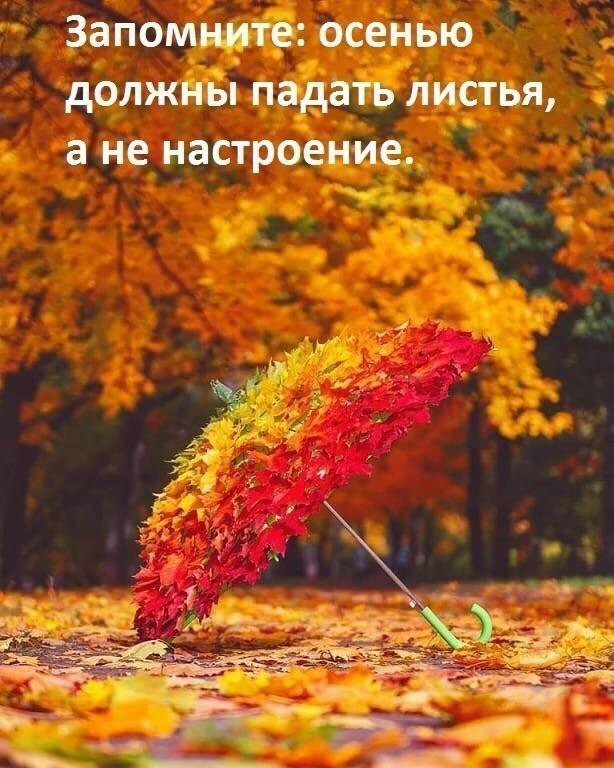 https://sun7-9.userapi.com/c855520/v855520829/11acf7/SUZTgJCknZc.jpg